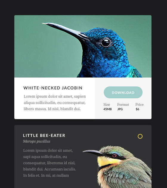 Aves UI by Erigon